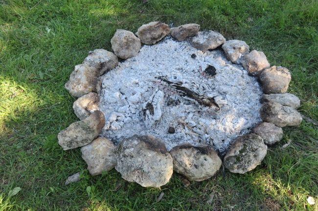 12 Overraskende anvendelsesmuligheder for træ aske i hjemmet og haven