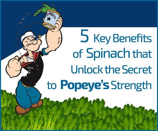 5 De vigtigste fordele ved spinat, som låser op hemmeligheden til popeye styrke