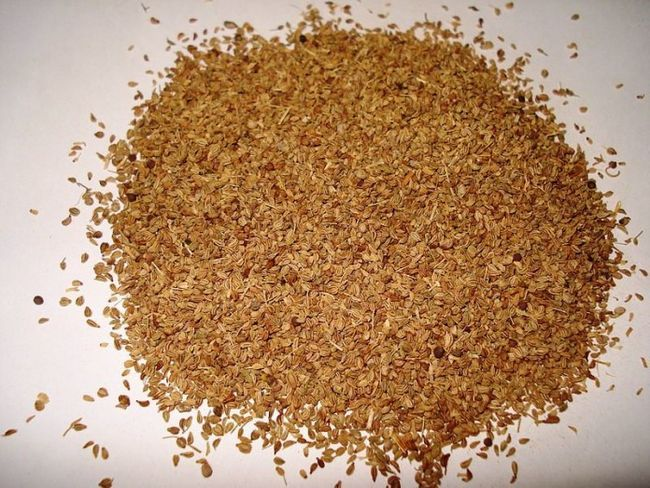 Amazing sundhedsmæssige fordele, bruger & bivirkninger af ajwain (carrom frø), som du bør vide