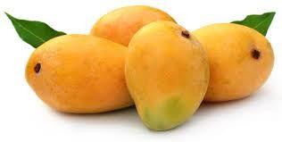 Sundhed gavn for mango
