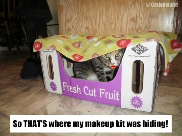 Den nysgerrige tilfælde af manglende makeup!